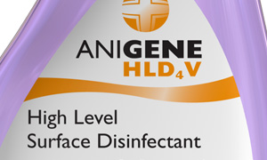ANIGENE HLD4V RTU for Animals - Lavender